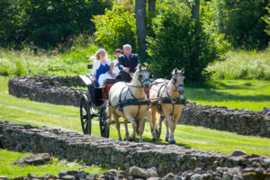 Bride arrives in hourse carriage